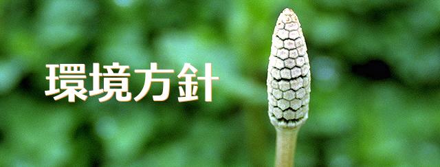 東京システムリサーチ株式会社の環境方針。